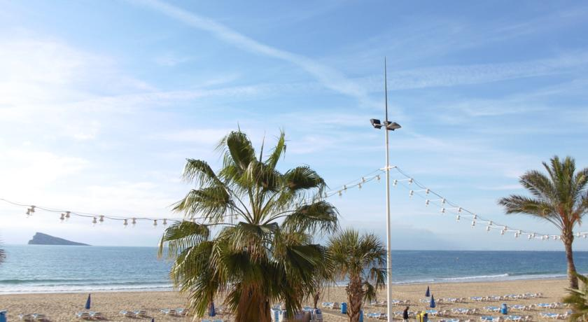 Holidays to Costa Blanca - Beach and Palm Tree