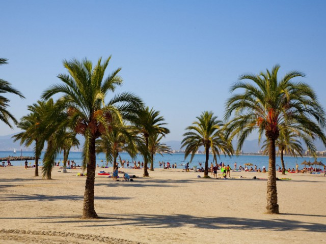 Majorca Beach holiday